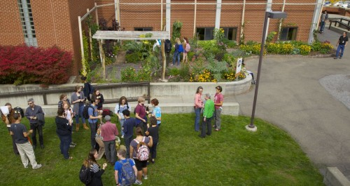 First Harvest Celebration in the Fall of 2011. The site is now a beautiful outdoor classroom that produces food, flowers, and herbs while demonstrating a new paradigm for landscaping that sequesters carbon and funds itself.